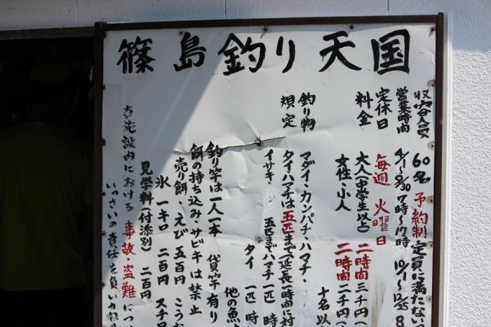 篠島 釣り 天国